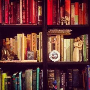 The Amateur Librarian