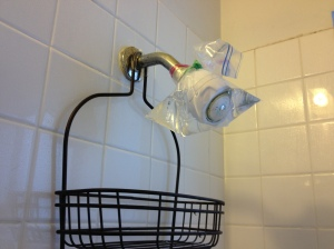 The Amateur Librarian // Pinterest Project: Clean Shower head with Vinegar