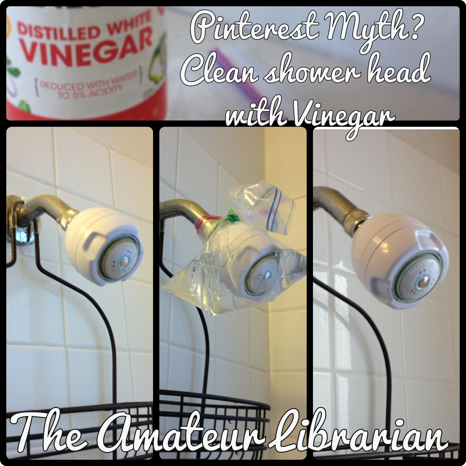 Project Pinterest Vinegar Shower Head Soak The Amateur Librarian