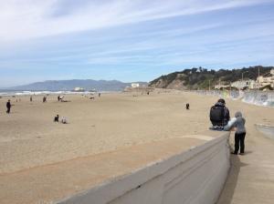 The Amateur Librarian // Biking through Golden Gate Park
