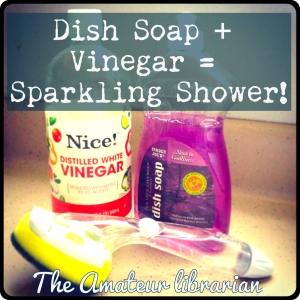 The Amateur Librarian // Project Pinterest: Vinegar + Dish Soap