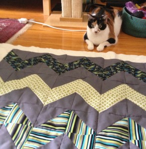 The Amateur Librarian // HST Chevron Quilt