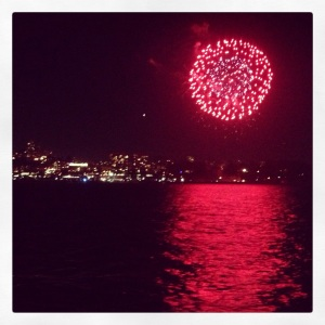 The Amateur Librarian // Fireworks Cruise