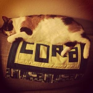 Cora loves her cat mat too!