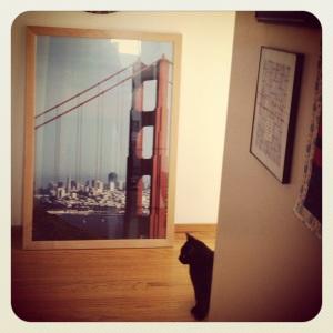 I think Tali likes the new art!