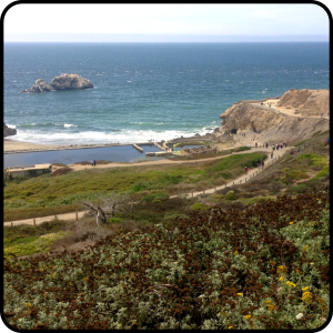 The Amateur Librarian // City Sights: Sutro Bath Ruins