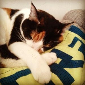 So sweet (when she's sleeping)
