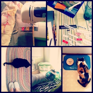 Scenes from a Sunday... sewing, crafting, dishes, and cats!