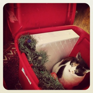 Cora helps unpack the Xmas decorations...