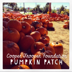 The Amateur Librarian // Cooper Trooper Pumpkin Patch