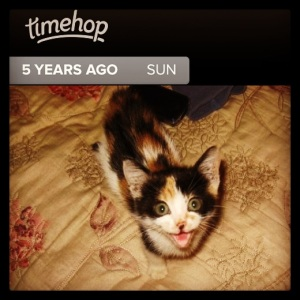 5 years ago Cora was a tiny (and loud) little thing!