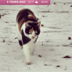 This is one of my favorite pics of Cora, from the Mississippi snow days of 2010. Thanks, Timehop!