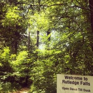 The Amateur Librarian // Rutledge Falls