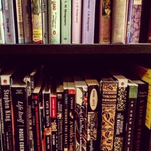 The Amateur Librarian // Books on a Budget