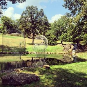 The Amateur Librarian // Cheekwood Botanical Gardens