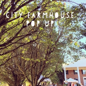 The Amateur Librarian // Franklin City Sights: City Farmhouse Pop Up