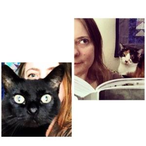 Cat selfies!