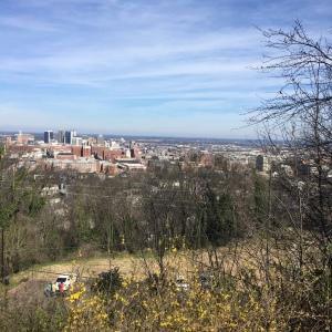 The Amateur Librarian // Birmingham Road Trip