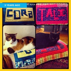 #TBT when I practiced my wonky piecing by making the cats their own quilts
