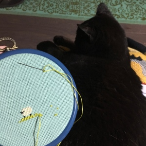 The Amateur Librarian // Spring Ring Cross Stitch