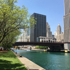 The Amateur Librarian // Chicago City Sights: Architecture Boat Tour