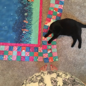 The Amateur Librarian // Firefly Baby Quilt
