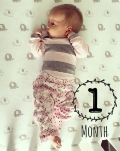 The Amateur Librarian // 1 Month